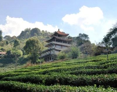 Über einer Teeplantage thronender chinesischer Bau in Doi Mae Salong