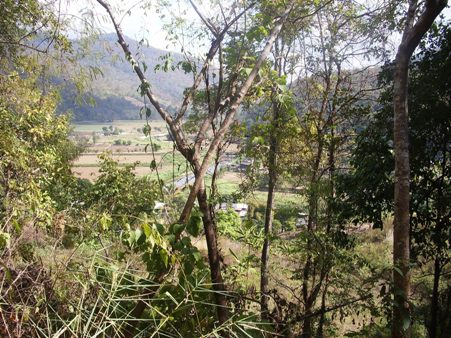 Blick aufs Tal von Pangmapha