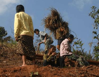Ermüdende Arbeit am zukünftigen Tee-Hang in Loi Kaw Wan