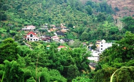 Ausläufer der chinesischen Tee-Stadt Ban Doi Wawee, Nordthailand