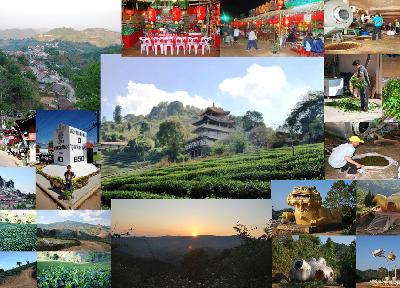 Doi Mae Salong, Zentrum des Teeanbaus in Nordthailand: Geschichte und Entwicklung