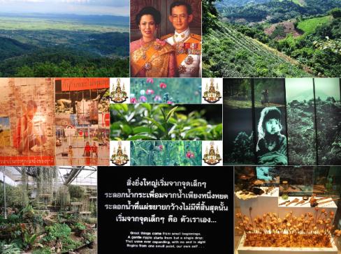 Doi Tung: Thailändisches Königspaar / Teegärten / Königliches Entwicklungsprojekt