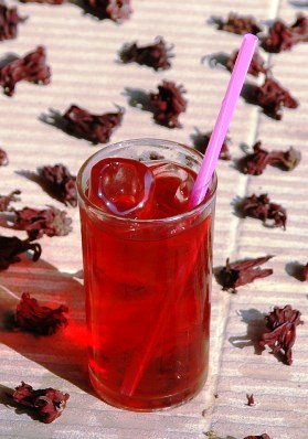 Roselle Hibiskus Eistee im Glass mit getrockneten Blüten