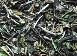 Pai Mu Tan Weißer Tee - Supercloseup 2