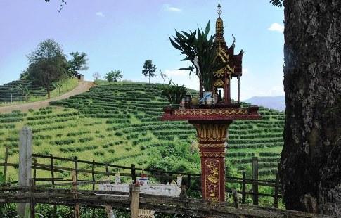Spirit House & Teegarten, Ban Thoed Thai