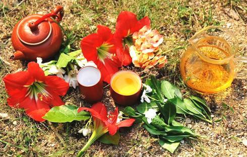 Frühlings-Oolong-Tees Doi Mae Salong, Nordthailand, 2014: Gong Fu Cha