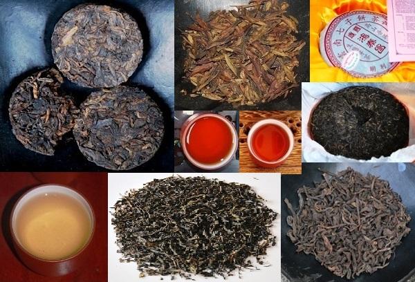 sheng und shu Pu erh Tee in unterschiedlichen Formen und Farben