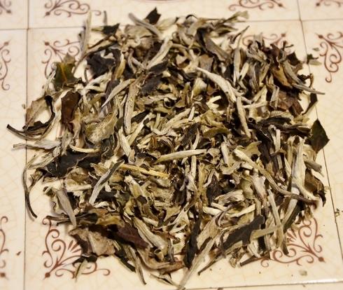 Ancient Tree White Moonlight Tee - 1+1 Pflückstandard