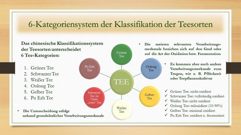 Das 6-Kategoriensystem der Klassifikation der Teesorten: prägend für unser Verständnis von Tee als Getränk