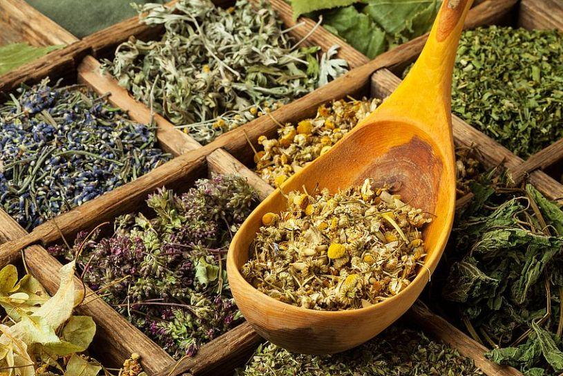 Verschiedene Kräutertees - nicht Tee im engeren Sinne