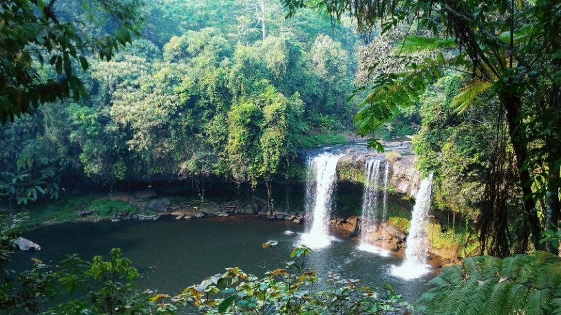 Ancient forests and waterfalle at Tad Champee, Bolaven Plateau , Laos