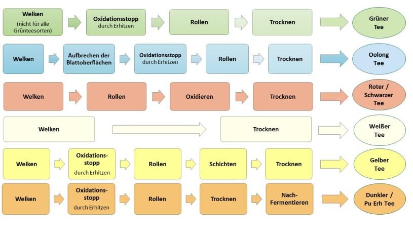 Teeverarbeitung - Schritte - 6 Kategorien - Chart