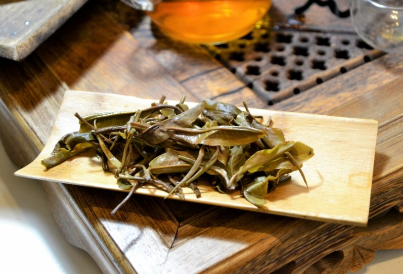 young sheng - wet tea leaves after infusing