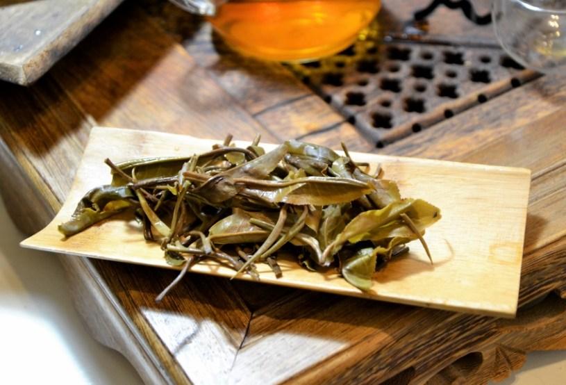 junger sheng - nasses Teeblatt nach dem Aufguss