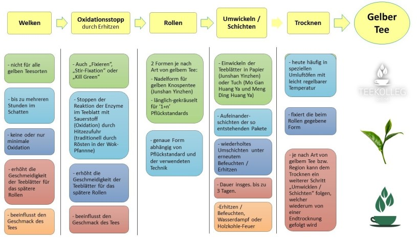 Die Verarbeitung von gelbem Tee - Übersicht über die Verarbeitungsschritte
