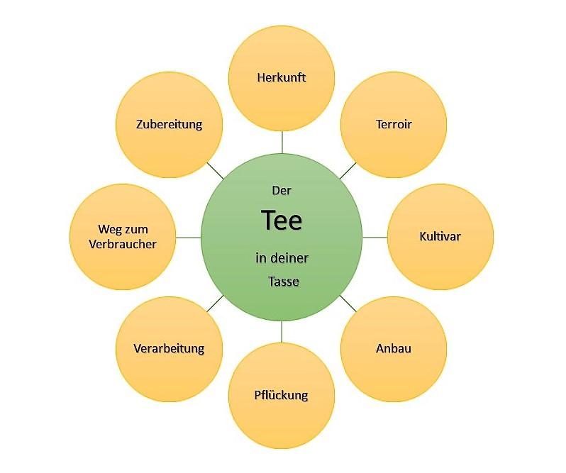 8 Qualitätsfaktoren von Tee - Der Tee in deiner Tasse