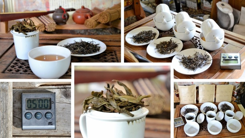The professional tea tasting in a commercial context achieves the comparability of its results through standardization of all parameters of the tea preparation