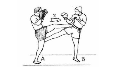 Photo of Muay Thaï: Thai boxing techniques with illustrations