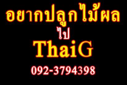 อยากปลูก ต้นไม้ ไป ThaiG