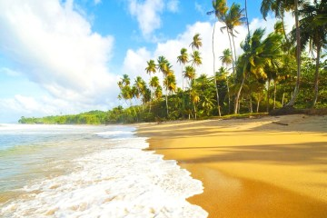 Blanchisseuse Beach Trinidad Beautiful Caribbean Sea Clouds Island Sand Palms Quiet Wallpaper Desktop Summer