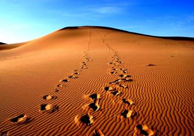 Chad-Desert