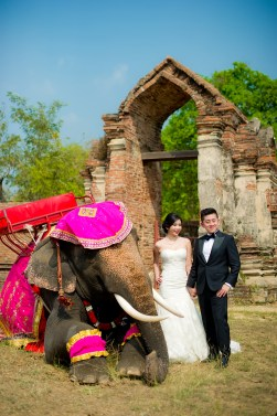 Cherlyn and Ben's Ayutthaya Elephant Village pre-wedding (prenuptial, engagement session) in Ayutthaya, Thailand. Ayutthaya Elephant Village_Ayutthaya_wedding_photographer_Cherlyn and Ben_2196.TIF