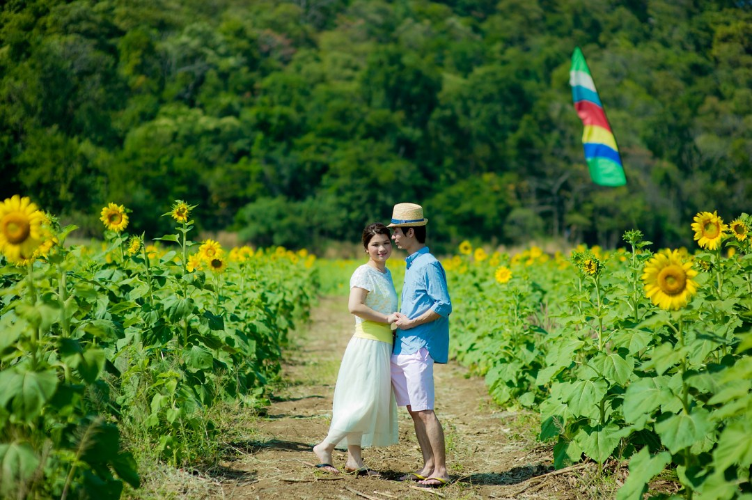 Sunflower Field Pre-Wedding | Saraburi Wedding Photography