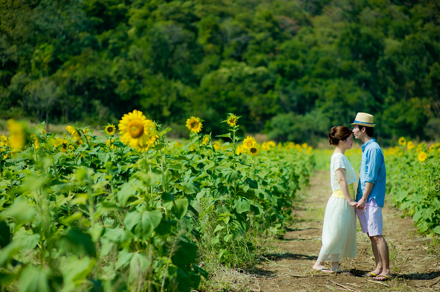 Photo of the Day: Sunflower Field Saraburi Pre-Wedding