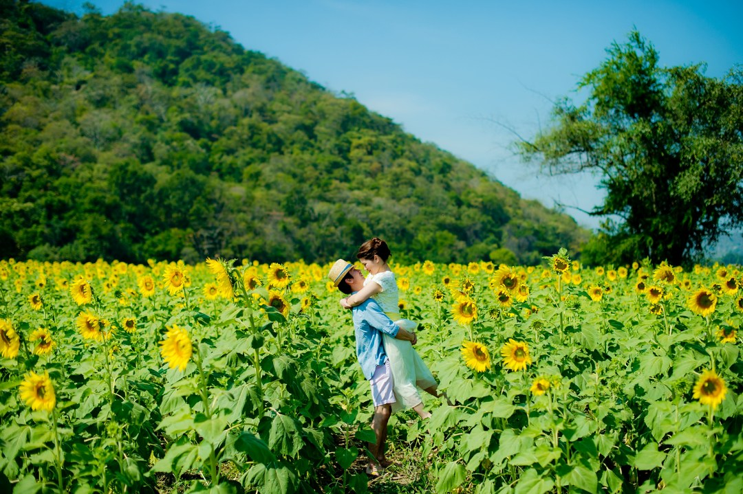 Sunflower Field Pre-Wedding - 2039