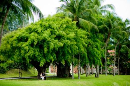 Rachel and Michael's Banyan Tree Phuket pre-wedding (prenuptial, engagement session) in Phuket, Thailand. Banyan Tree Phuket_Phuket_wedding_photographer_Rachel and Michael_39.TIF