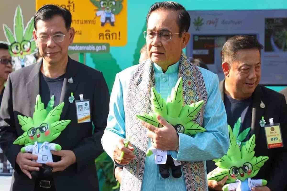 Medical Cannabis - World Ganja Festival - Thailand Event Guide