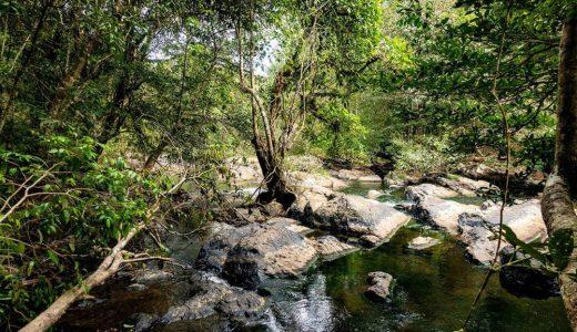 カオヤイ 国立公園 (Khao Yai National Park)