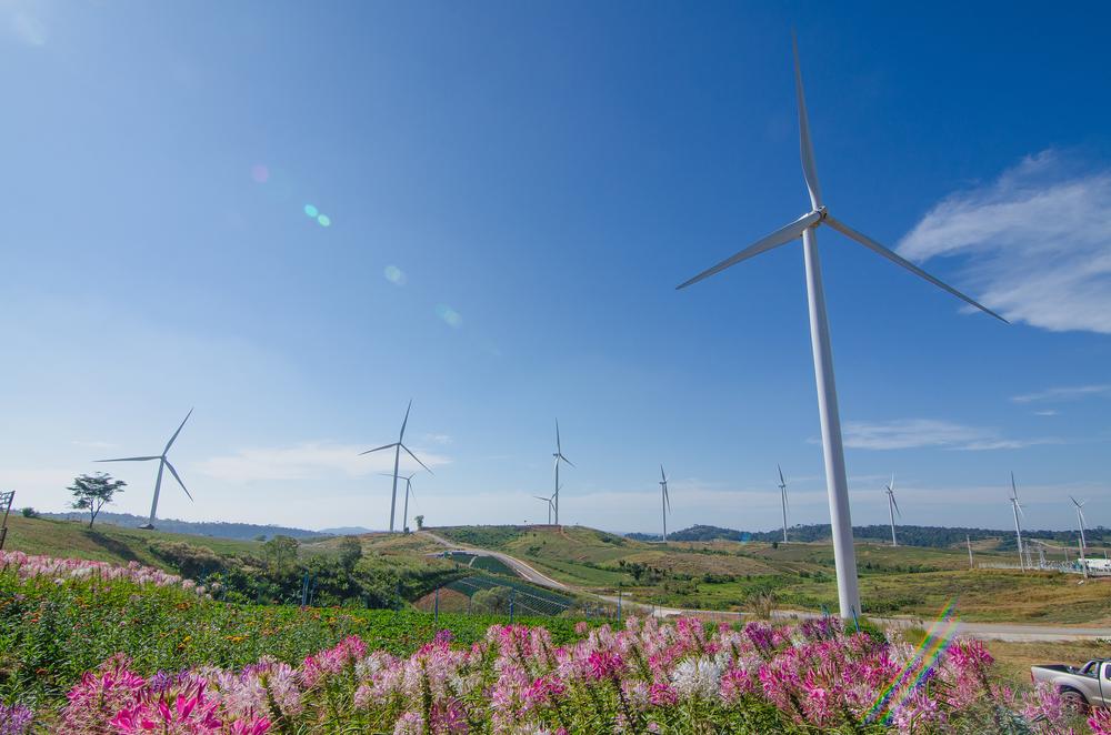 กังหันลม (Wind Turbine Field)