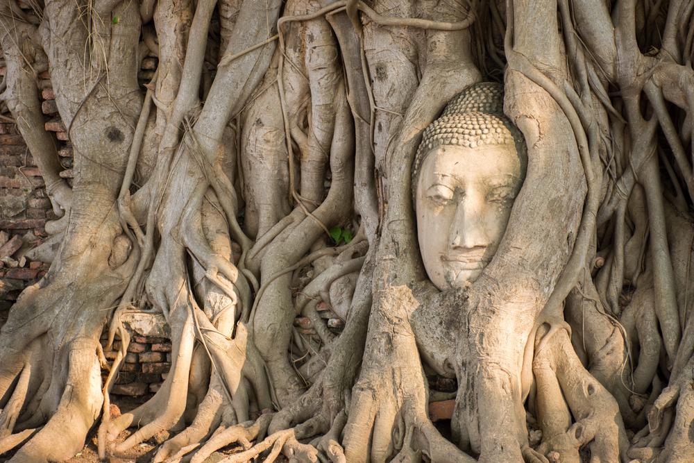 วัดมหาธาตุ (Wat Maha That)