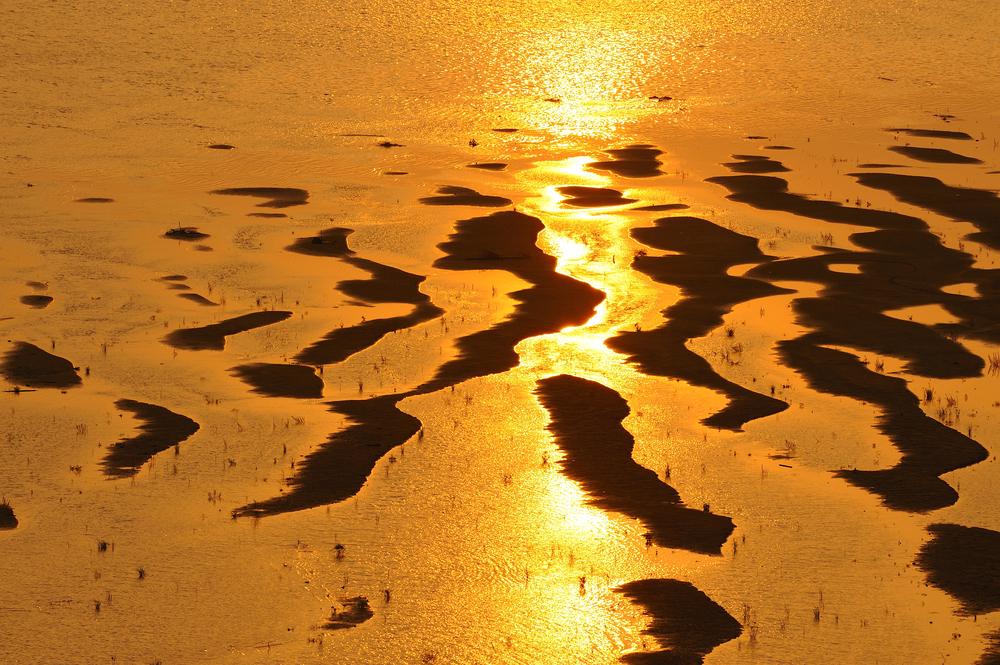 Golden Sand Beach of Sri Kotara Boon (หาดทรายทองศรีโคตรบูร)