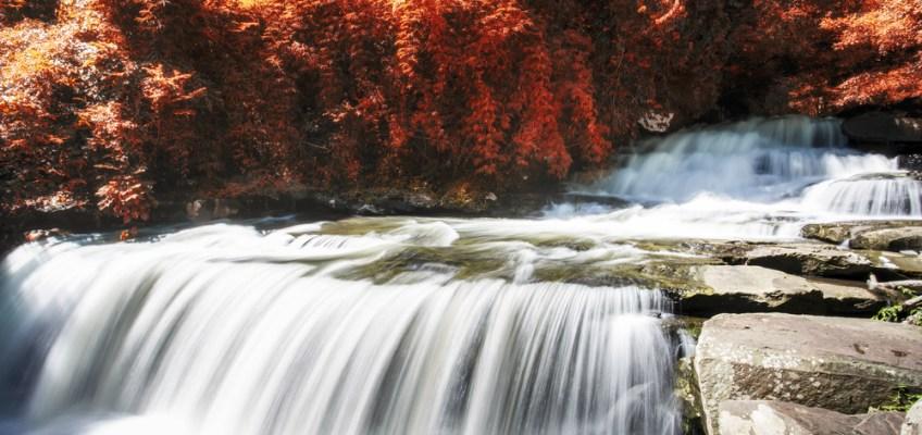 Than Thong Waterfall (น้ำตกธารทอง)