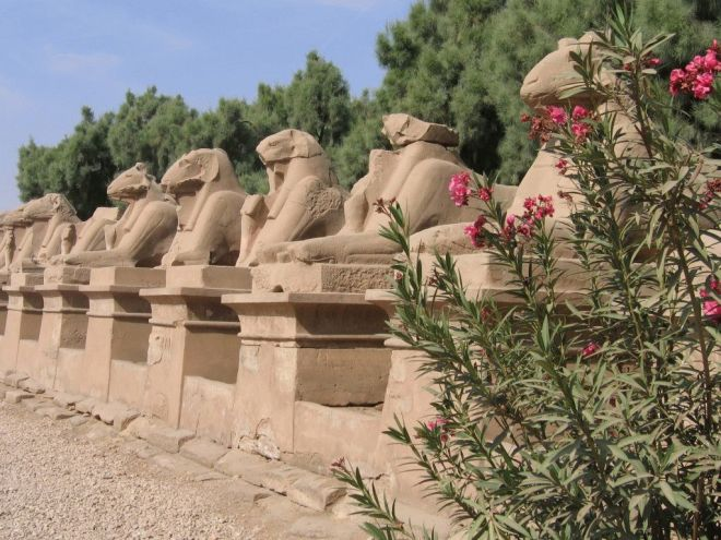 egypt 08