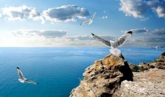 Знаменитое Черное море