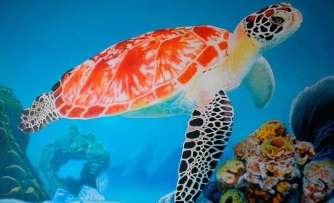 Черепахи в Таиланде