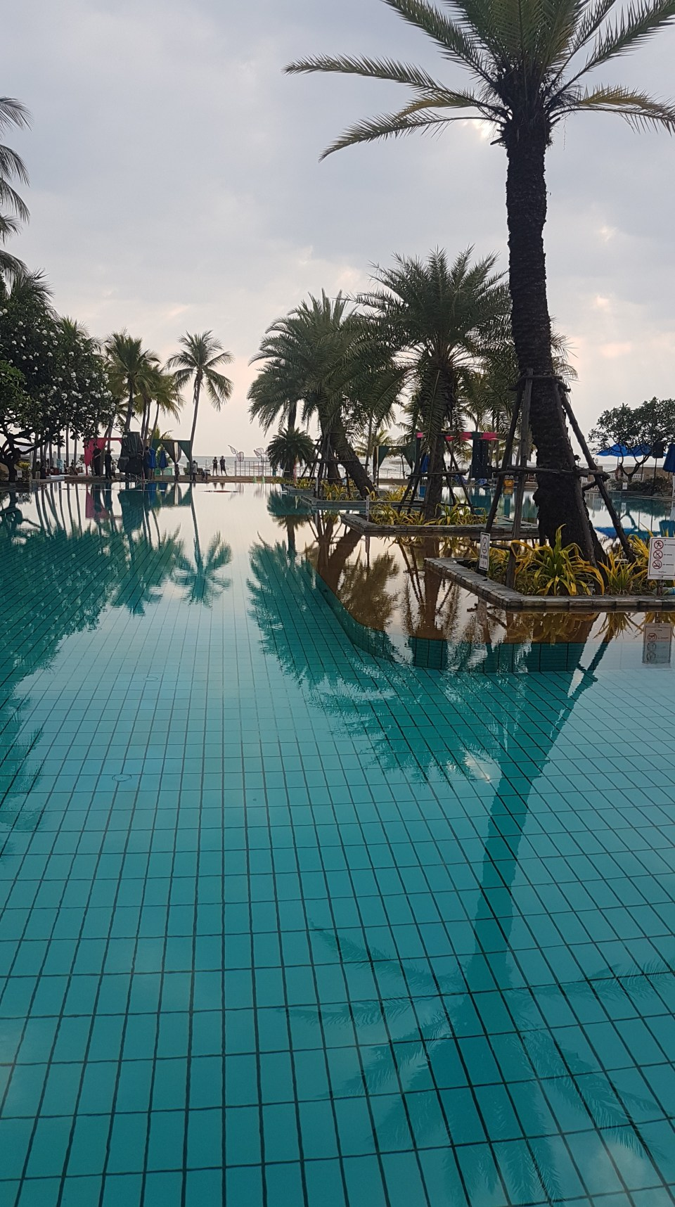 Swimming pool Dusit hotel