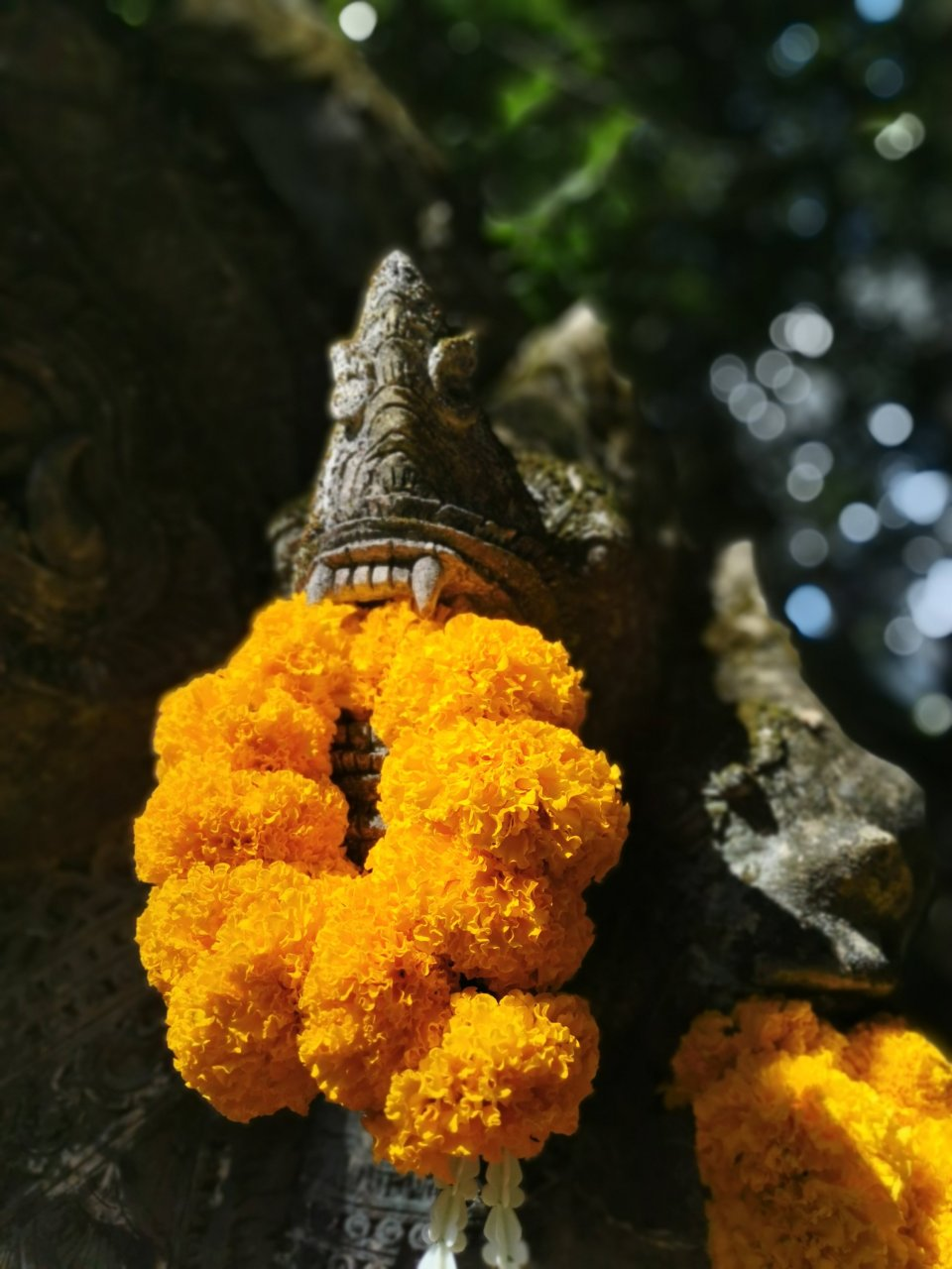 Marigold and a guardian