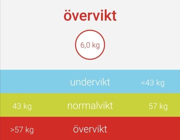 Övervikt enl. BMI!