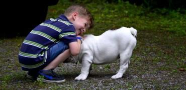 Animais ajudam no desenvolvimento pessoal das crianças