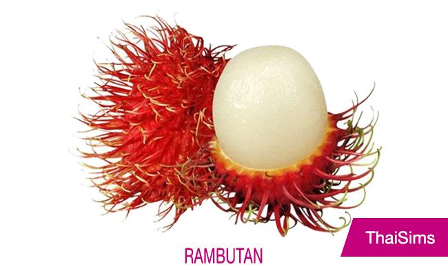 Rambutan Thailand ThaiSims