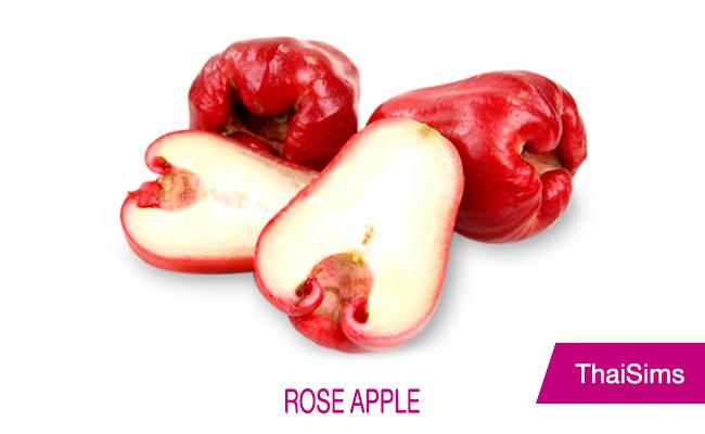 Thai Rose Apple thailand fruit thaisims