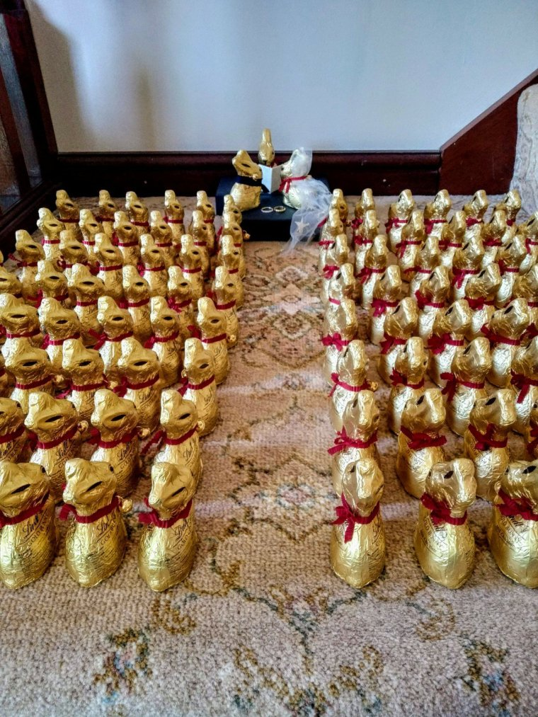 Updated: a tale of 115 Lindt bunnies 2