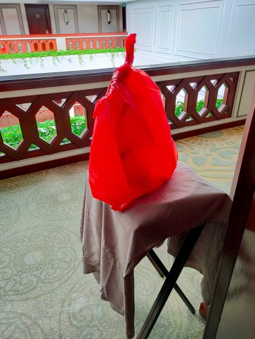 Two weeks in a hotel room: Experiences from Thailand's ASQ Quarantine 5