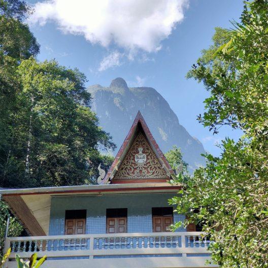 The Mae Salong loop: An easy Northern Thailand road trip 6