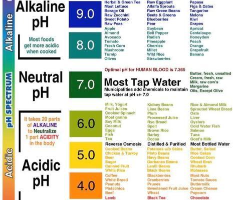 Alkiline PH