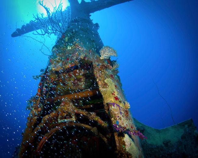 Here's-what-World-War-II-planes-now-look-like-in-their-underwater-graves-650x520